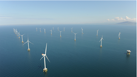 Offshore wind power with the potential to replace oil and gas to become a new driving force for Vietnam's economy